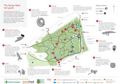 Image of Norsey Wood Trial Guide